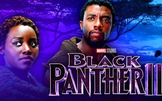 Black Panther 2: Chadwick Boseman Is Very Honored In Marvel Sequel, Says Star
